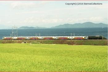 81-0 岡サロ (蓬莱)B .jpg